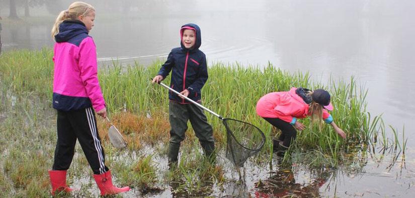Three schoolchildren exploring nature on a shore.