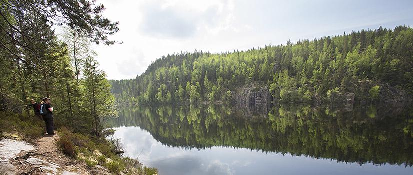 Kolme retkeilijää seisoo rantaa pitkin kulkevalla polulla ja katselee, kuinka metsä heijastuu tyynen järven pintaan vastarannalla.