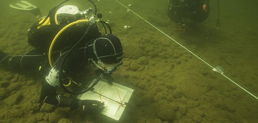 Sukeltaja kirjaa veden alla havaintoja paperille. Kuvassa näkyy myös narulla merkitty tutkimuslinja.