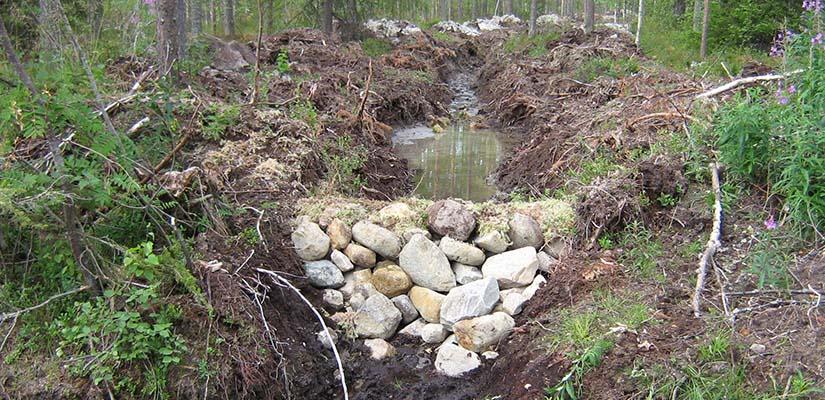 Ojan tukkeeksi on kasattu kiviä ja maa-ainesta.