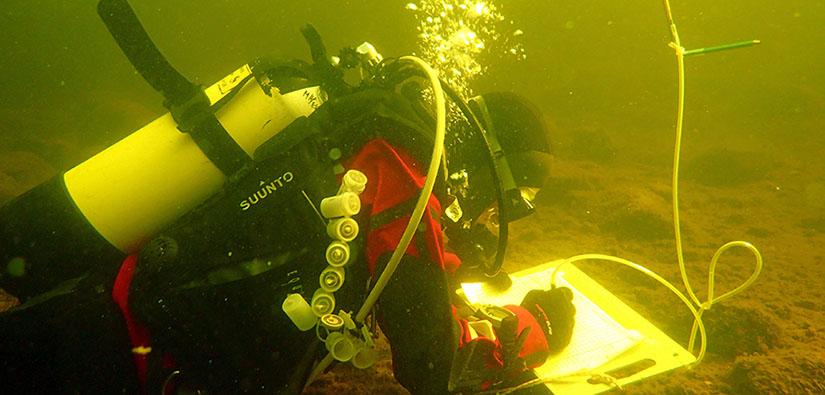 Sukeltaja kirjaa havaintoja veden alla.