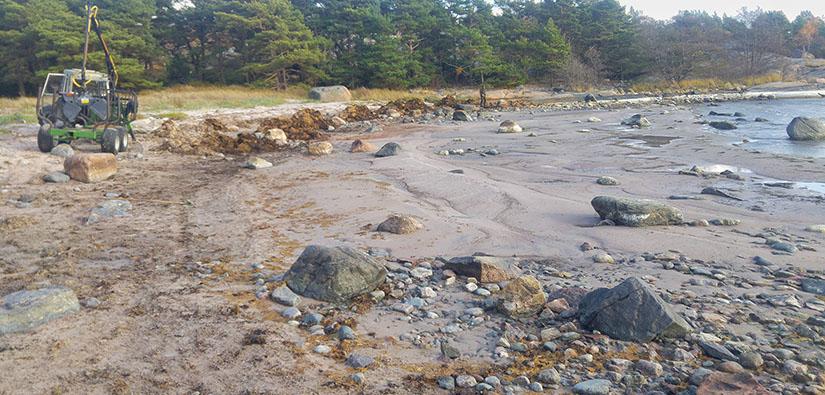 Traktori hiekkarannalla. Rannalla on paljon erikokoisia kiviä. Hiekkaranta muuttuu ylempänä mäntymetsäksi.