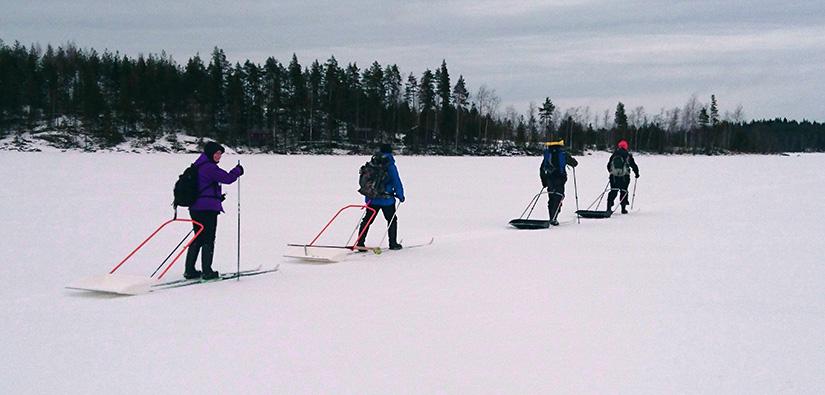 Neljä vapaaehtoista hiihtää jäällä. Jokainen vetää perässään lumikolaa.