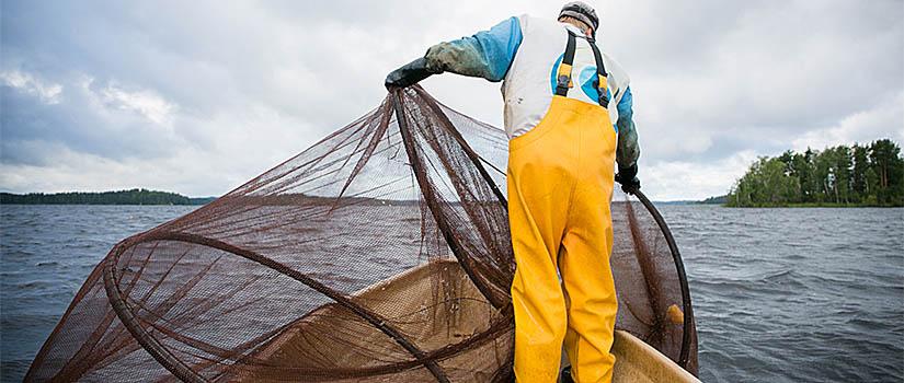 Kalastaja laskee turvallista rysää veteen veneestä.
