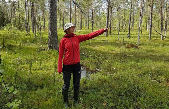Projektipäällikkö Suvi Haapalehto toivoo karttakyselyn avulla löytyvän uusia arvoikkaita luontokohteita valtion mailta.