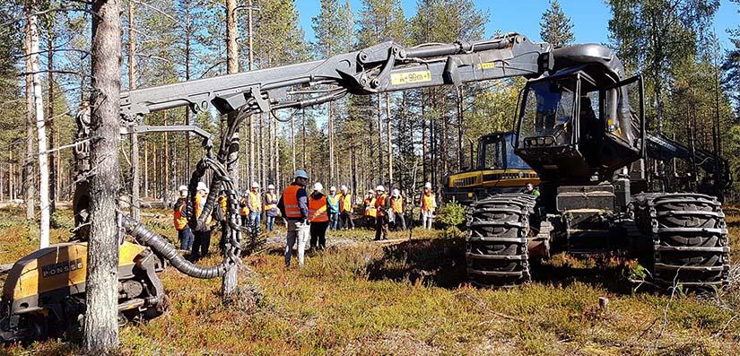 Metsäverkoston retkellä. Kuva: Metsähallitus