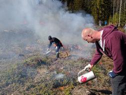 Kaksi henkilöä sytyttää aluskasvillisuutta palamaan kaasupolttimilla. Ilmassa on paljon savua.