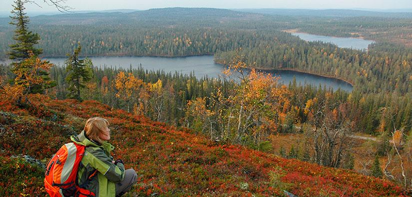 Retkeilijä istuu tunturin laella ja katselee järvien pilkkomaa metsämaisemaa.