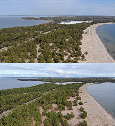Kuvapari ennen ja jälkeen. Alemmassa kuvassa rannassa on vähemmän puita.