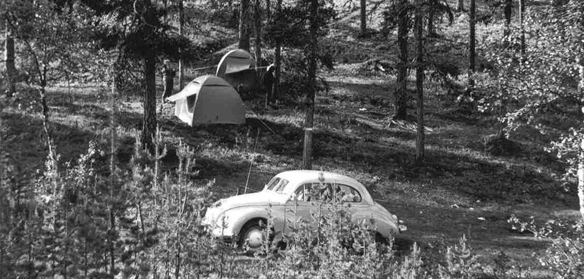 Kaksi telttaa pystytetty metsän keskelle, etualalla metsään pysäköity kuplavolkkari.