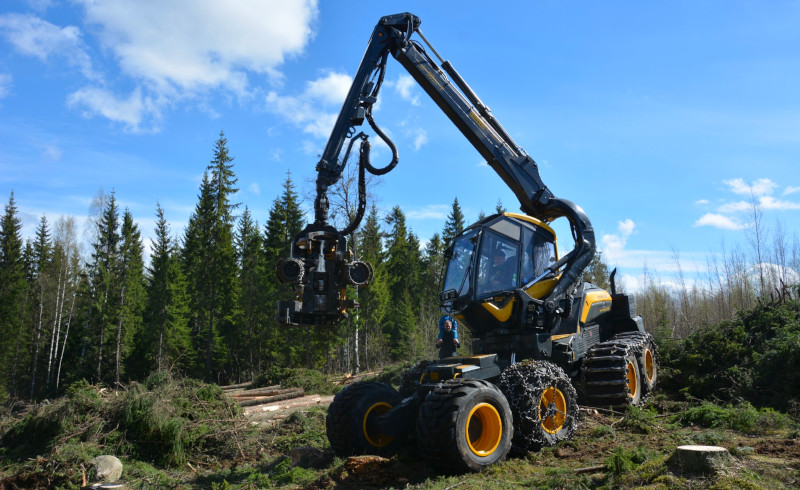 A forest machine on a forest regeneration site.