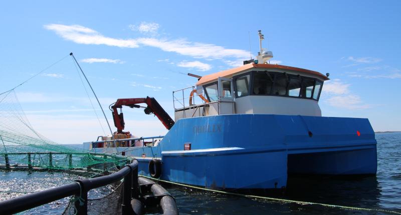 Kala-alus kelluu kalankasvatusaltaan vieressä.