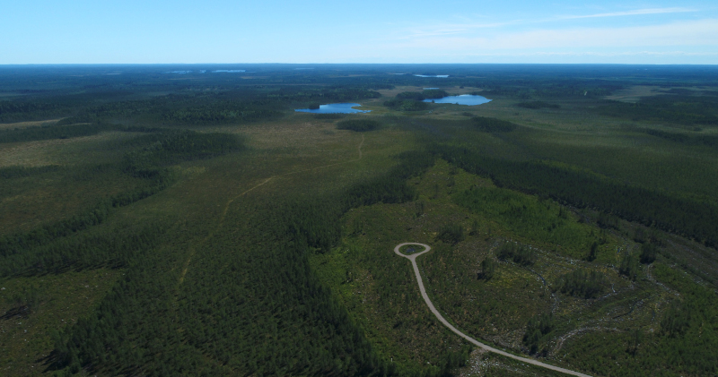 An aerial photograph of a large forest area with small lakes, a forest road and felled areas.