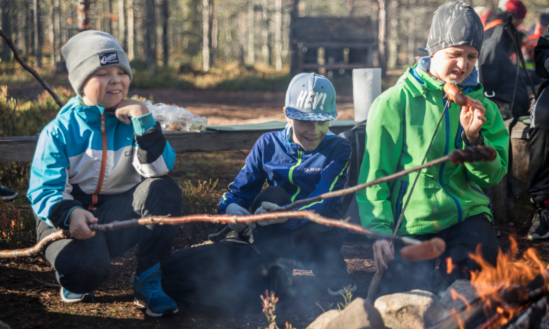 Three boys are cooking sausages at a campfire site in Mottimetsä.
