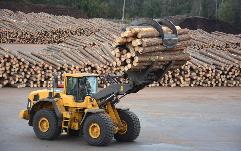 A shovel loader is carrying a bundle of logs at a large timber loading site.