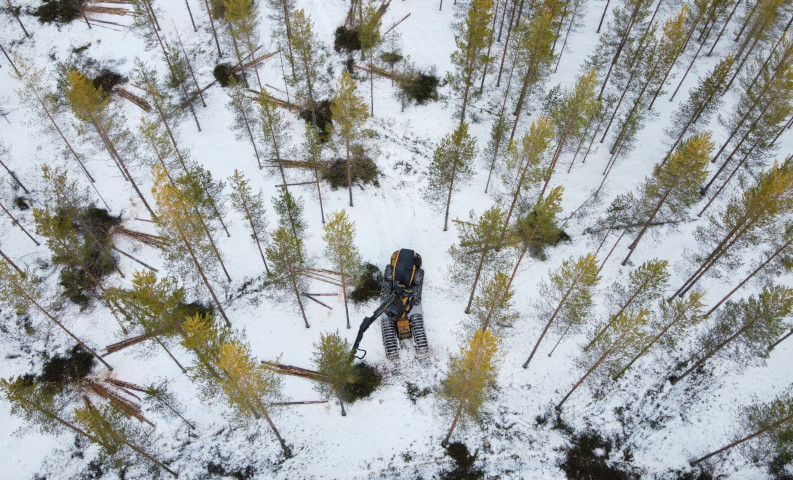 An aerial photograph of a forest machine cutting down a spruce in a landscape of snowy forested hills.