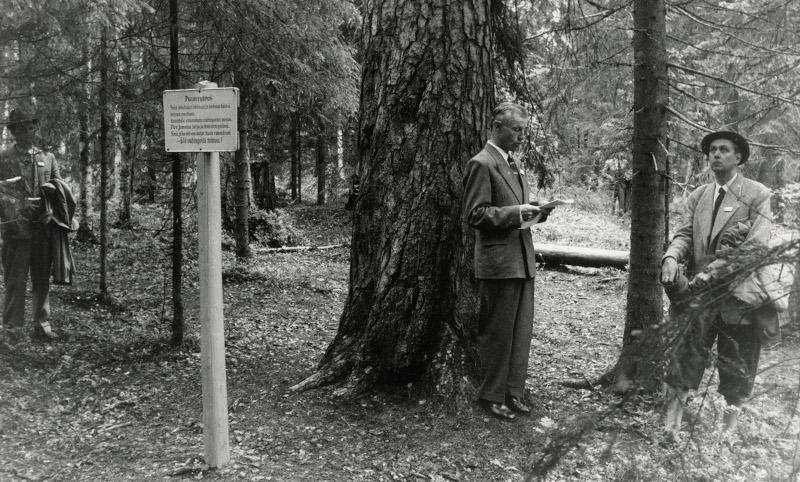 En man håller tal för en lyssnande publik vid en gammal fura i en nationalpark, svartvit bild.