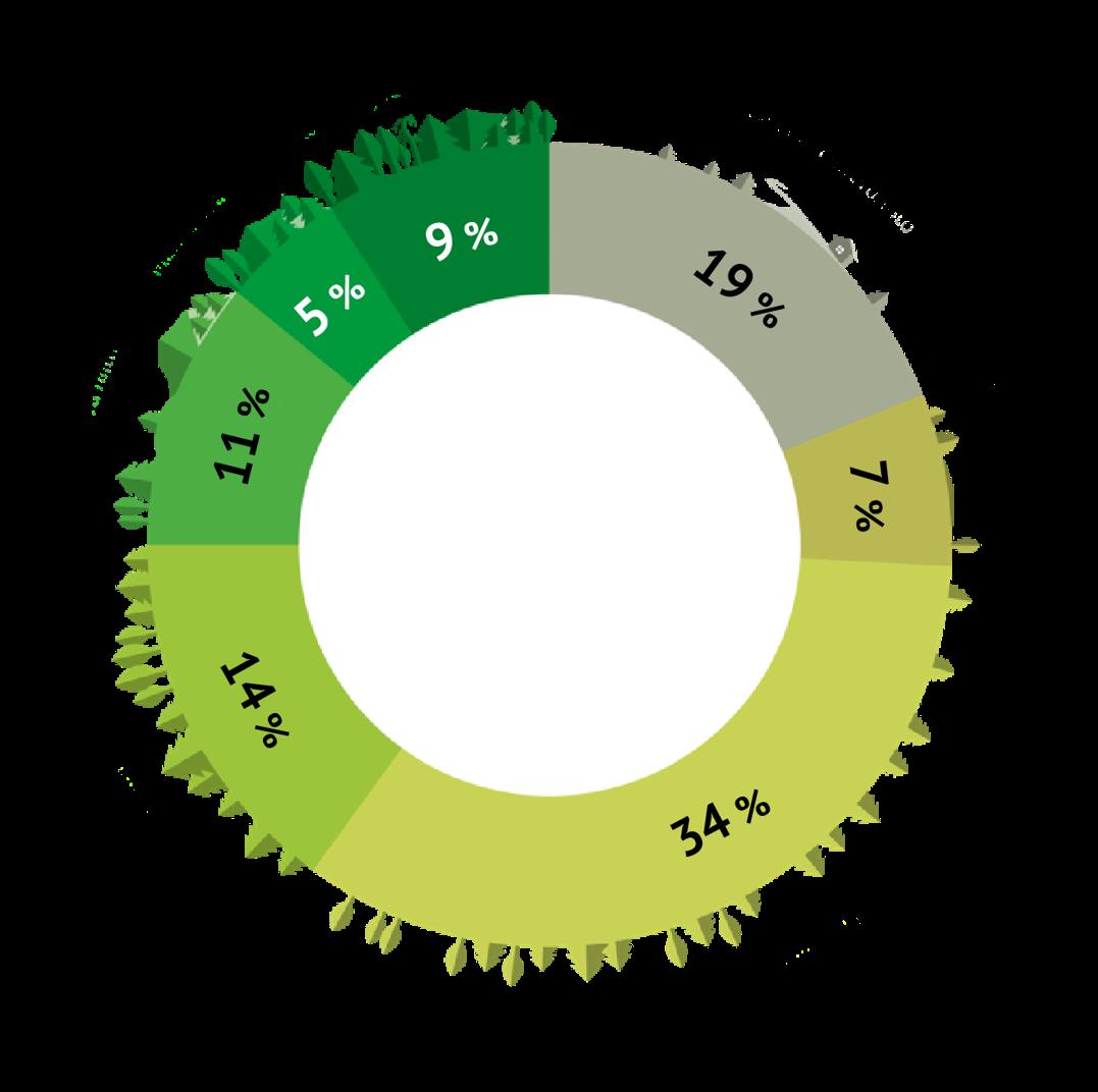 Figuren visar hur mångbruksskogarna är fördelade procentuellt enligt kolklass. Klassernas namn och procenttal finns i den löpande texten under figuren.