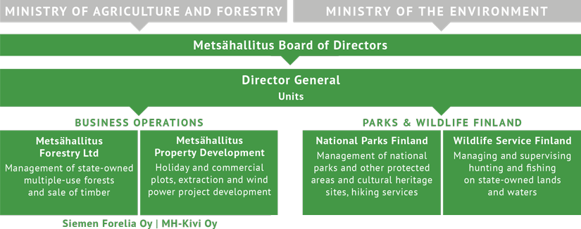 Organization Chart. The structure of the organization is explained in the body text below.