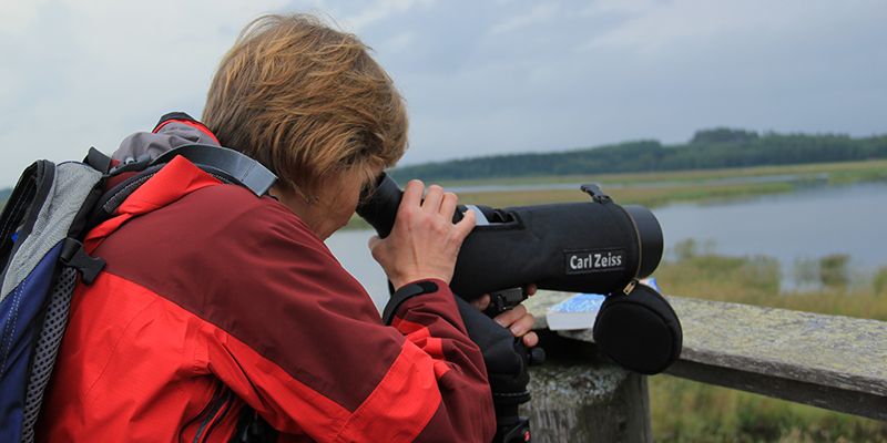A birdwatcher watching birds at at a lake with a telescope.
