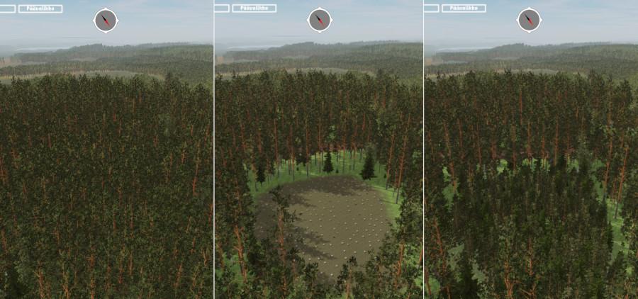 En tredelad före och efter bild, ritad med ett datorprogram, av ett avverkat område mitt i skogen. På vänster sida är skogen vuxen, det finns ett fällningshål i mitten, och på höger sida beskrivs skogen efter 30 år.