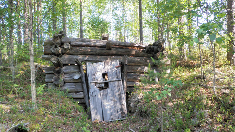 The remains of a collapsed cottage in the forest.
