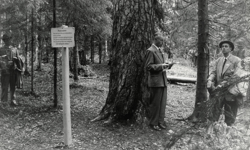 A man is making a speech at the foot of an old pine tree in a national park while others listen, a black and white image.