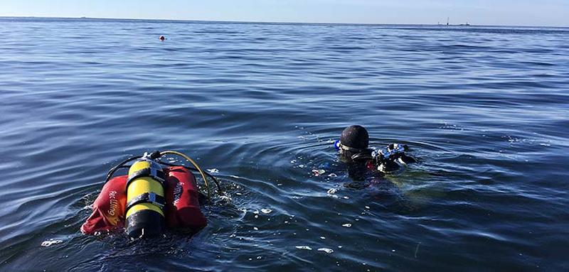 Kaksi sukeltajaa veden pinnalla.