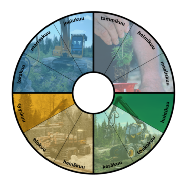Annual calendar of Forestry Ltd's procurements. The circle is divided into 12 months. The first quarter is illustrated with pine planting, the second with timber harvesting, the third with timber transportation and the fourth with excavator contracting.