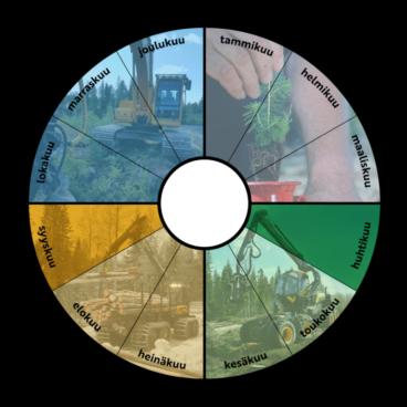 Vuosikellografiikka, jossa ympyrä on jaettu 12 kuukauteen. Ensimmäinen vuosineljännes kuvitettu männynistutuksella, toinen puunkorjuulla, kolmas puunkuljetuksilla ja neljäs kaivuriurakoinnilla.