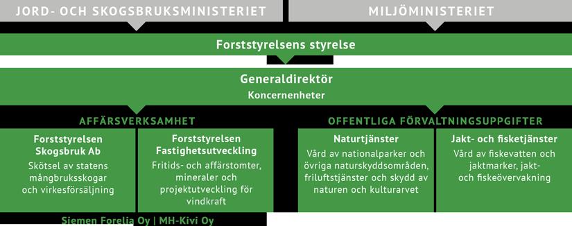 Diagrammet visar hur Forststyrelsens organisationen bildas. Uppgifterna kan också läsas i huvudtexten under diagrammet.