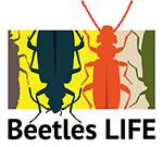 Beetles LIFE -hankkeen tunnuskuva, piirrettyjä kovakuoriaisia