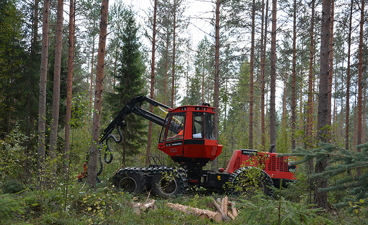 A red forest machine is harvesting trees in an autumn forest.
