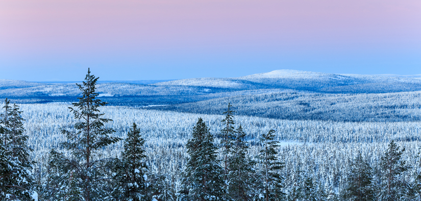 A blue moment in the winter fells of Ylläs.