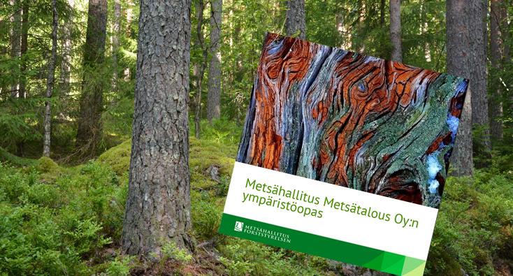Ympäristöoppaan kansi, taustalla metsää