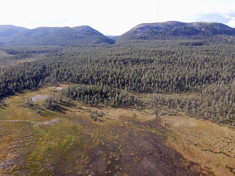 Ilmakuva, jossa etualalla avosuota, sen takana metsää ja kauempana tuntureita.