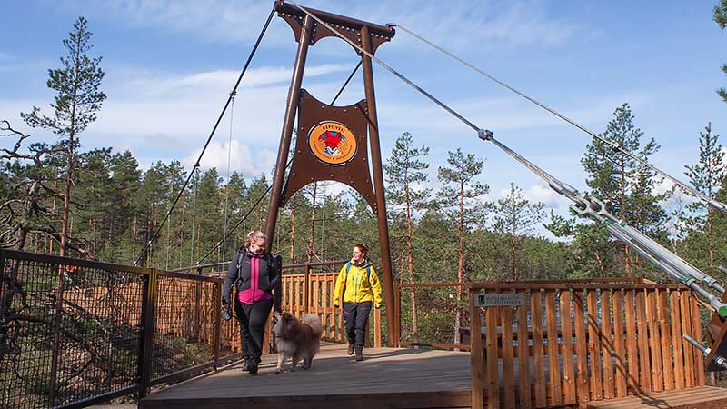 Kaksi retkeilijää ja koira astelevat Lapinsalmen sillalla aurinkoisena kevätpäivänä.