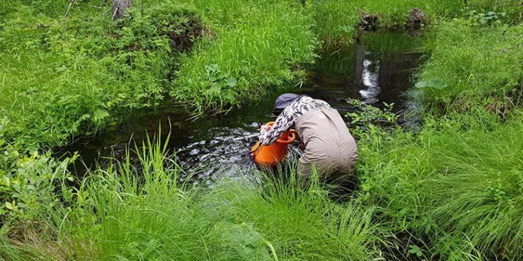 Ihminen seisoo purossa ja katsoo veden pohjaan lieriön muotoisella laitteella, vesikiikarilla.