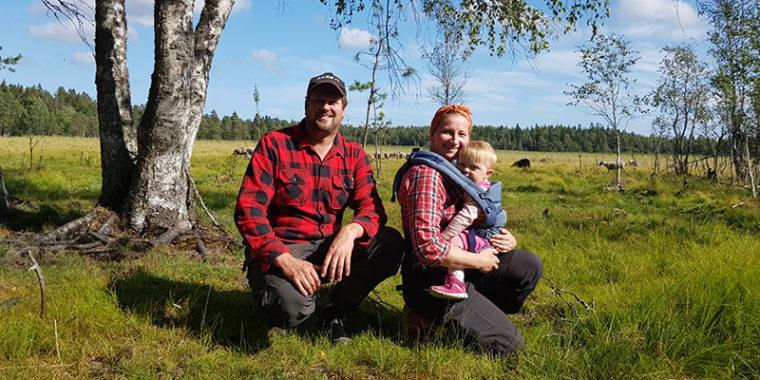 Mies, naienn ja pikkulapsi, takana avointa laidunta ja lampaita sekä metsänreuna,