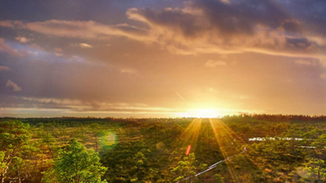 Solnedgång i Aegviidu-Korvemaa fotvandringsområde i Estland.