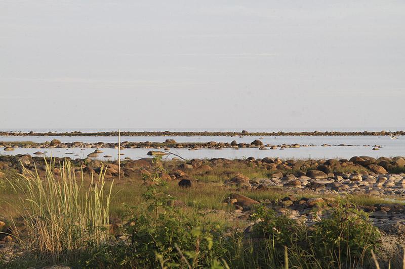 Kivikkoista rantaniittyä ja matalaa kivikkoista meren rantaa.