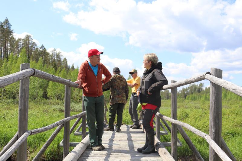 Vienan reitin sillalla keskustelemassa metsien käsittelystä Paavo Keränen ja Metsähallituksen tiimiesimies Ulla Lehtonen