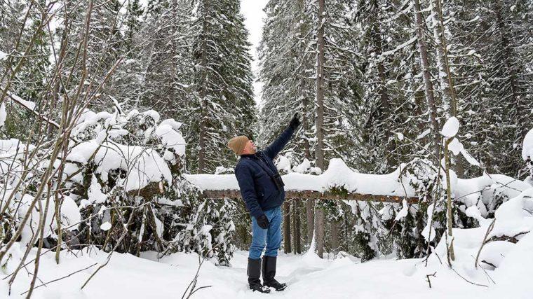 Mies seisoo talvisessa metsässä ja osoittaa kädellä puiden latvaan.
