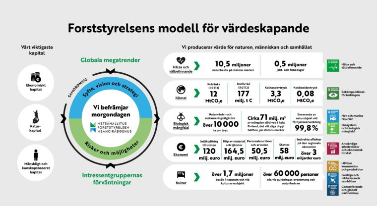 Forststyrelsens modell för värdeskapande