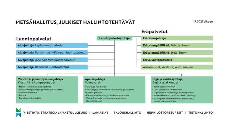 Kaaviokuva Metsähallituksen julkisten hallintotehtävien uudesta organisaatiorakenteesta