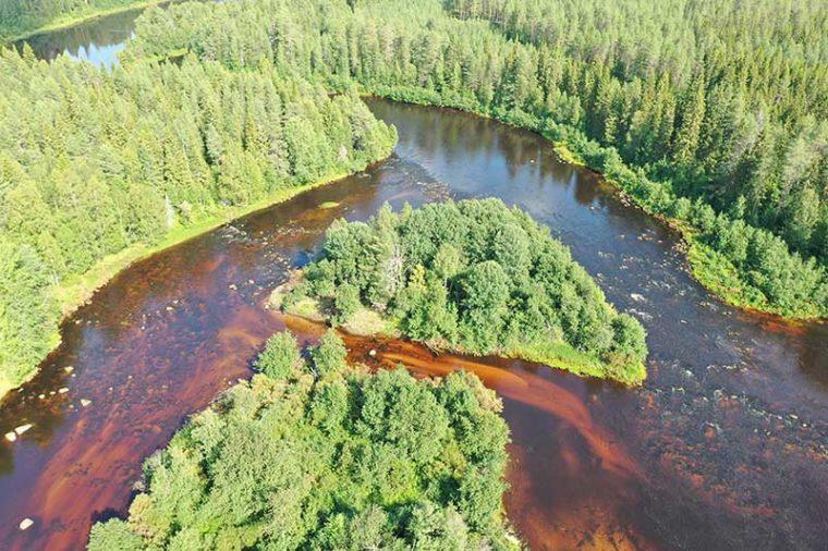Mutkitteleva joki, jossa on useita haarjoja ja saari.