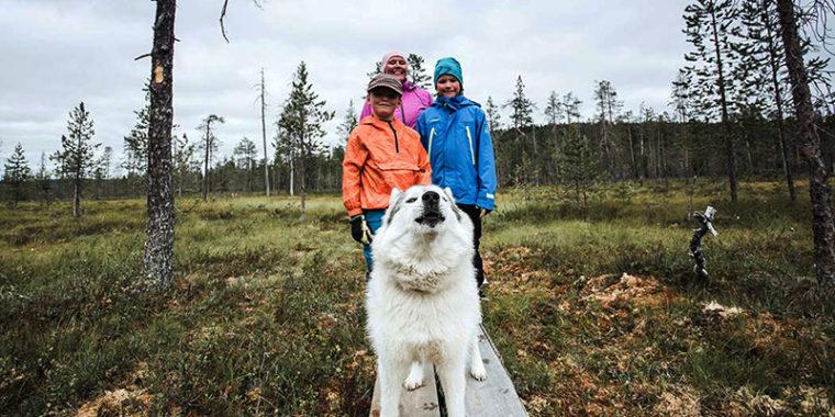 Pitkospuilla suolla seisomassa koira ja sen takana kaksi lasta ja aikuinen.