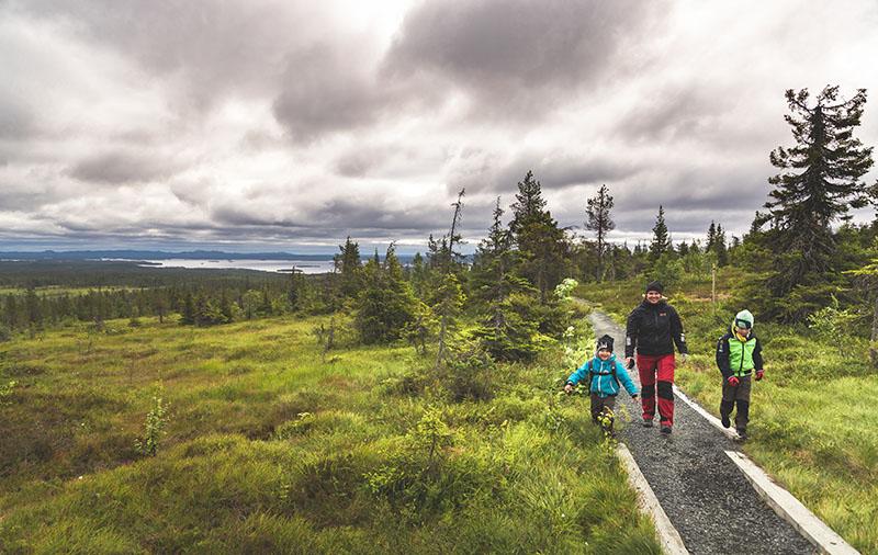 Nainen kävelee kahden lapsen kanssa sorastetulla polulla avoimessa tunturimaisemassa. Polun reunoilla on lankut. Taaemapana on järvi ja kuusimetsää.