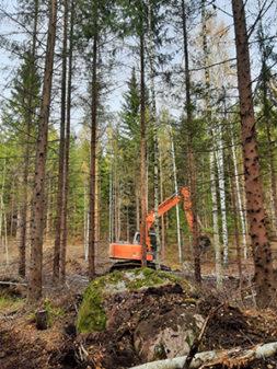 Kaivinkone kauha kaivausasennossa harvaa puustoa kasvavassa maastossa, etualalla iso kivi.